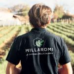 La nuova agricoltura calabrese con Millaromi.it